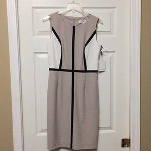 Calvin Klein's dress